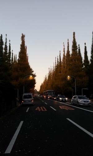 20121127_163001.jpg