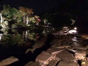 玄宮園ライトアップ5.jpg