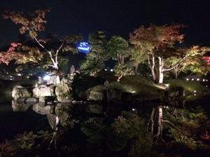 玄宮園ライトアップ6.jpg
