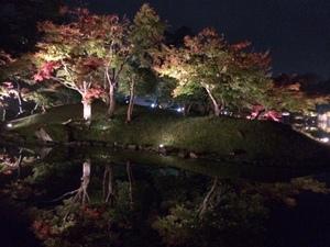 玄宮園ライトアップ7.jpg